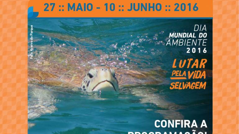 Parque Estadual da Ilha Grande promove atividades na Semana do Meio Ambiente