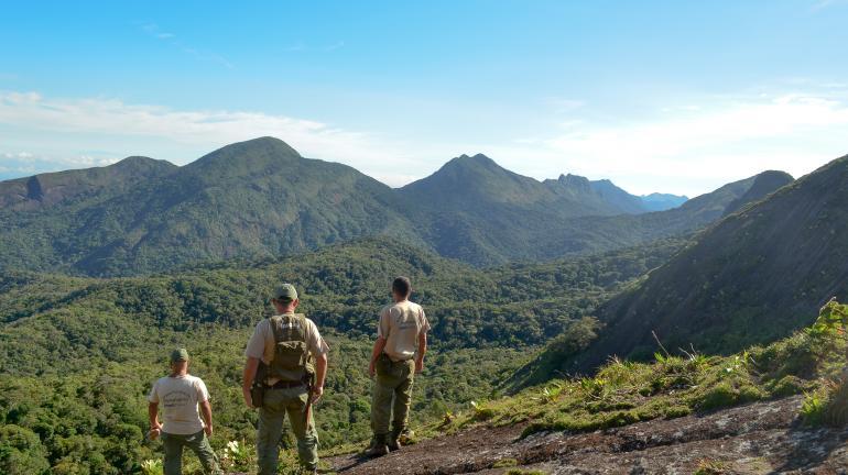 Inea identifica mais de 100 espécies endêmicas de aves no Parque Estadual do Desengano
