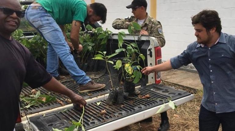 Pádua inicia plantio mudas de árvores para recuperar mata ciliar do Córrego Carangola
