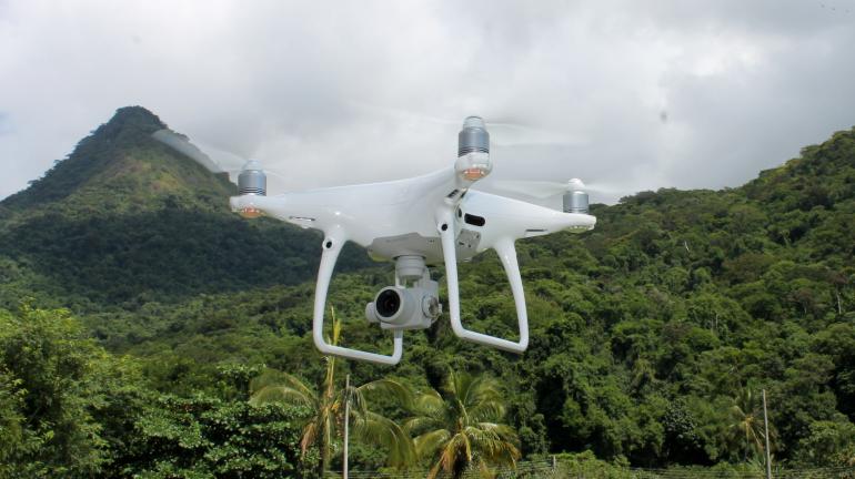 Drone reforça combate ao desmatamento na Ilha Grande