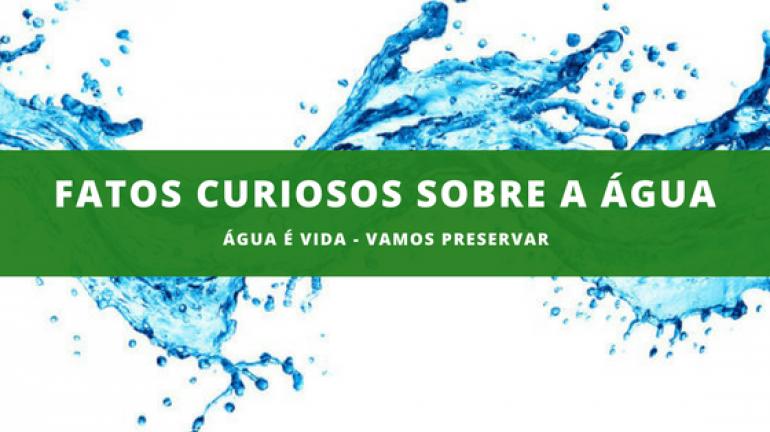 Dez fatos importantes sobre a água para você saber