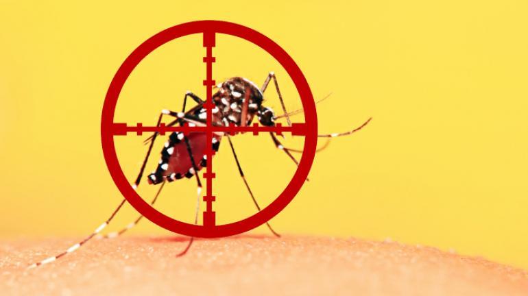Estratégia de vacinação contra a Febre Amarela para a população alvo em Valença