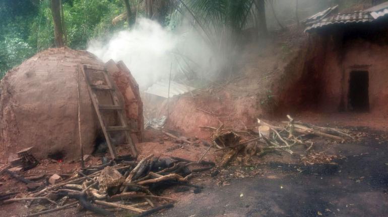 Operação flagra fornos de carvão ilegais e desmatamento em Itaguaí