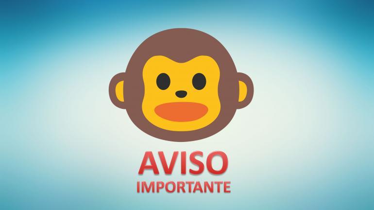 Saiba como agir caso encontre um macaco