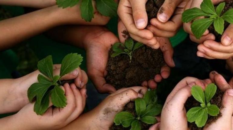 Rio de Janeiro aprova o Programa Estadual de Educação Ambiental