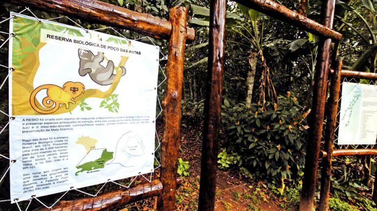 ICMS Ecológico renderá R$ 210 milhões para municípios do Rio