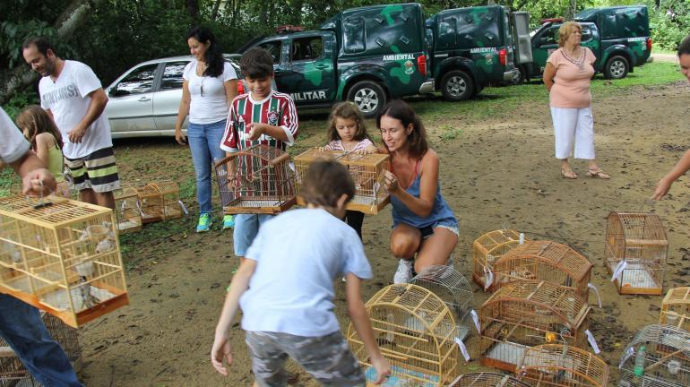 Crianças devolvem à natureza pássaros apreendidos em feiras livres do Estado do Rio