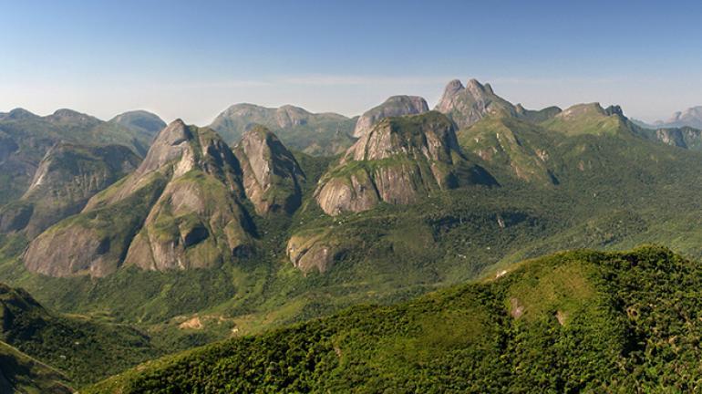 Flores raras são encontradas no Parque Estadual dos Três Picos