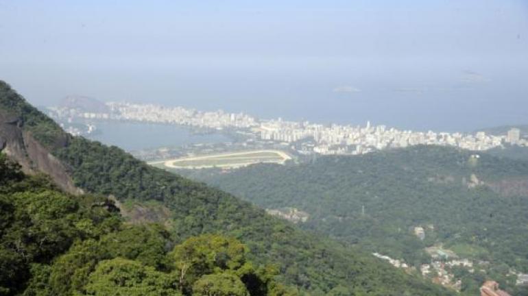Diminuir desmatamento reduz emissão de gases de efeito estufa no Rio, diz estudo