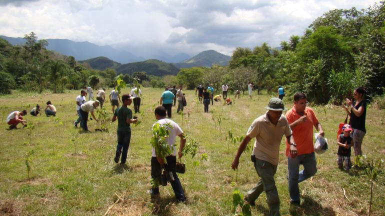 Plantio de árvores e soltura de pássaros apreendidos são destaques em Cachoeiras de Macacu