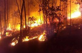 Incêndio em Madalena, RJ, chega ao 3º dia e combate é feito com ajuda de aeronave