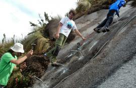 Parque Estadual dos Três Picos recebe ações de manejo e manutenção de trilhas