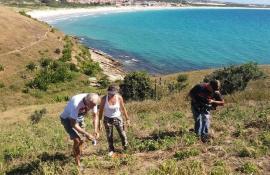 Parque da Costa do Sol ganha mudas em Cabo Frio, RJ, no 5º aniversário