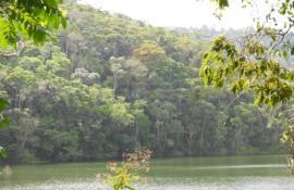 Parque Natural Municipal do Açude da Concórdia foi reaberto para a população