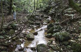 Carioca será o primeiro rio tombado do estado
