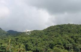 Inea quer utilizar drone para monitorar desmatamento ilegal em áreas controladas por milícias