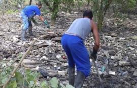 Inea inicia projeto de recuperação do manguezal de Tubiacanga, na Ilha do Governador