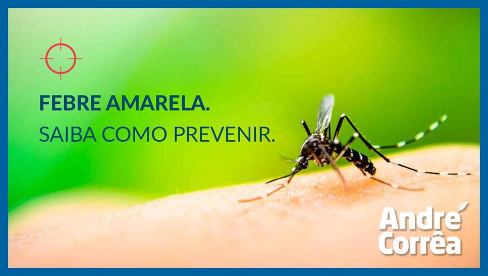 Rio de Janeiro é um dos principais focos da febre amarela no Brasil. Saiba como se prevenir!
