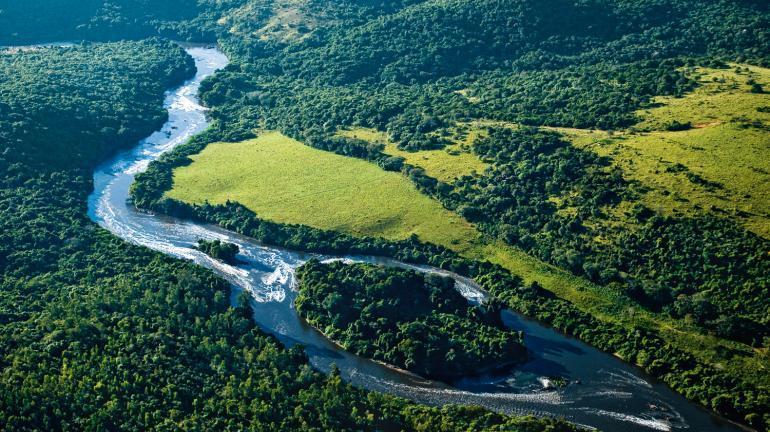 Rio de Janeiro trabalha para ser o primeiro Estado a zerar perda líquida de desmatamento ilegal