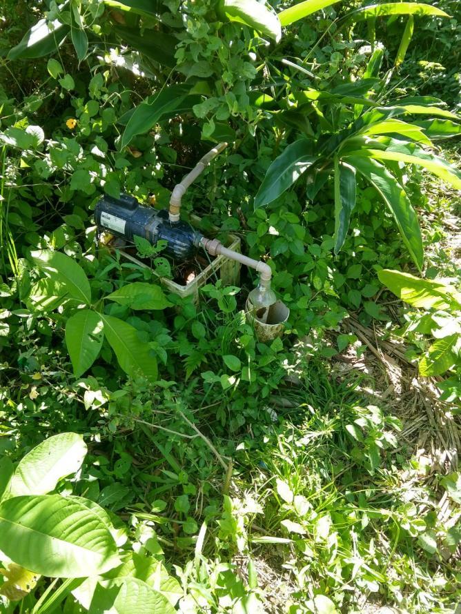 Policias da UPAm Serra da Tiririca identificam desmatamento e captação irregular de água em Maricá