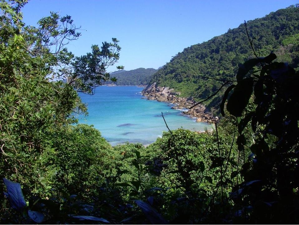 Parque Estadual da Ilha Grande promove mutirões e eventos educacionais na Semana do Meio Ambiente