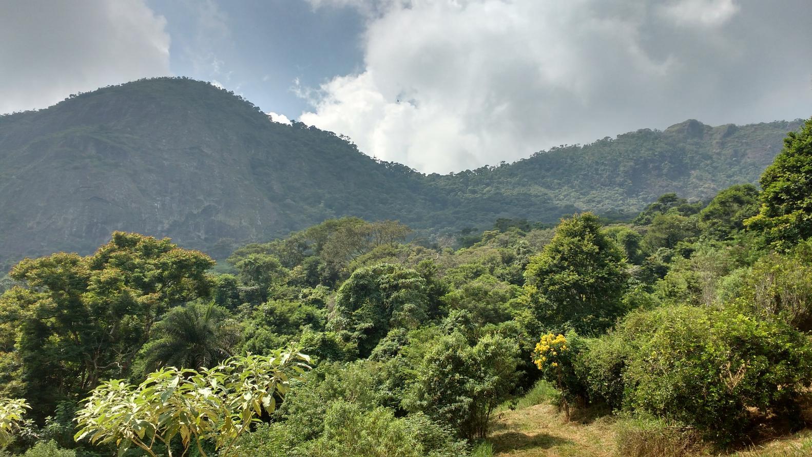 Inea promove Consultas Públicas para a criação de duas novas unidades de conservação estaduais