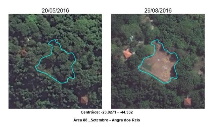 Inea notifica ilha em Angra por desmatamento ilegal