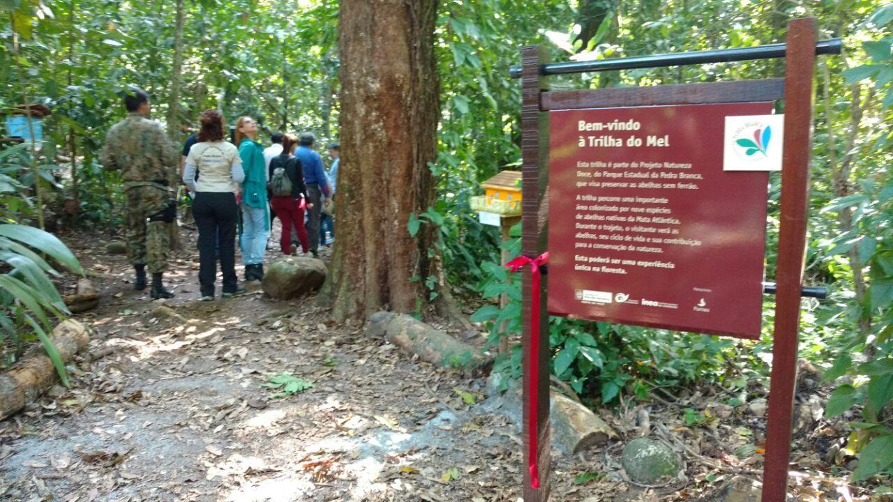 Parque da Pedra Branca inaugura bromeliário e nova trilha com abelhas nativas
