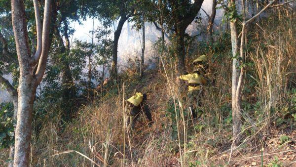 Incêndio em área de Ipiabas é controlado