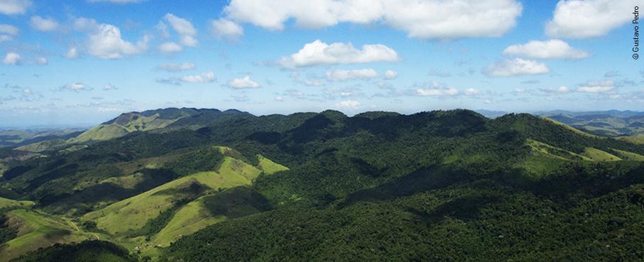 Governo do Estado avança na criação dos primeiros Refúgios da Vida Silvestre