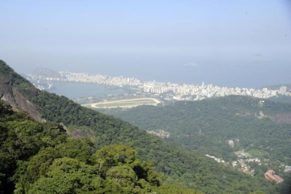 Estado do Rio de Janeiro se mantém em nível de desmatamento zero