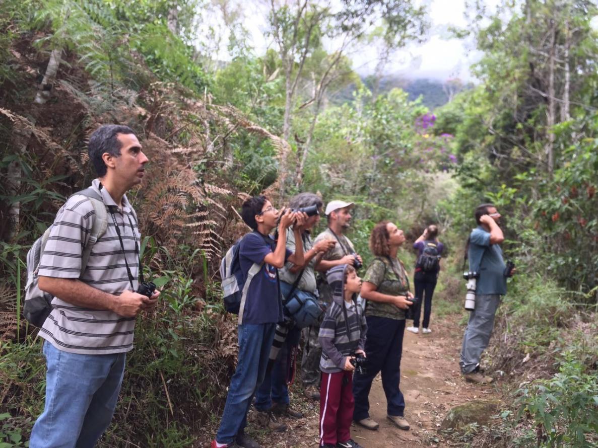 Mais de 20 espécies de pássaros são registradas por observadores na Reserva Biológica de Araras