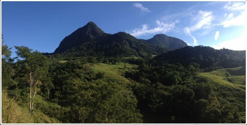Conceição de Macabu ganha Reserva Particular do Patrimônio Natural
